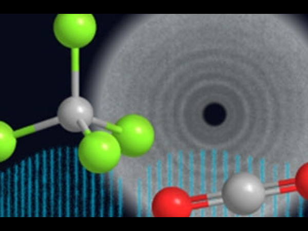 Learn Quantum Mechanics of Molecular Structures