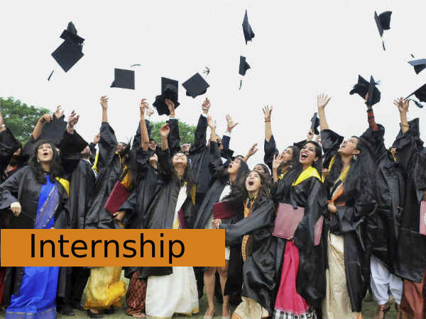 Indian diaspora students to get internships