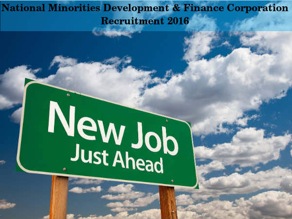 NMDFC Hiring for 4 Jr. Executive & Other Posts