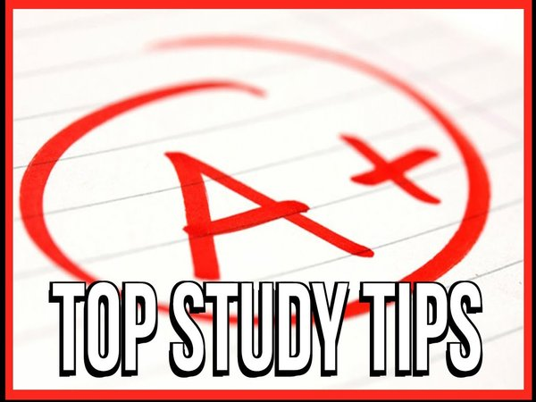 Top 6 Tips to Study Effectively for Exam