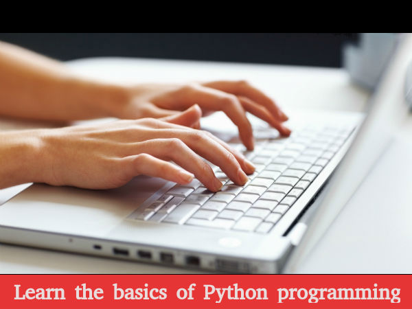 Learn the basics of Python programming