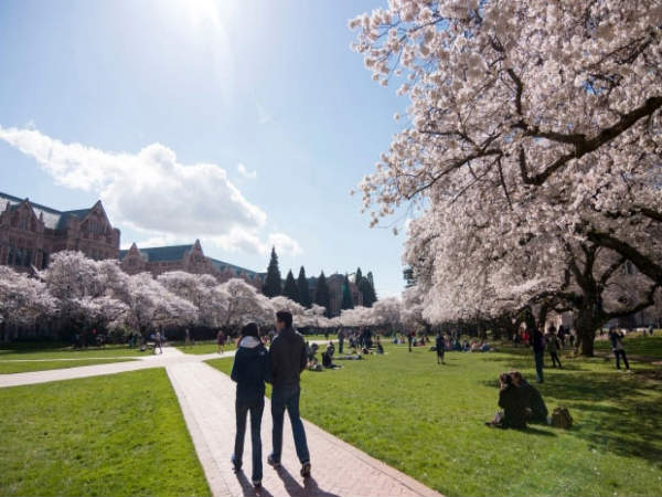 #5 University of Washington, USA
