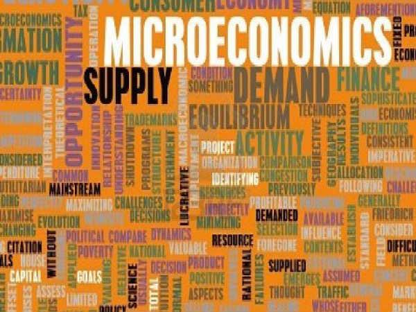 Online Course on Microeconomics