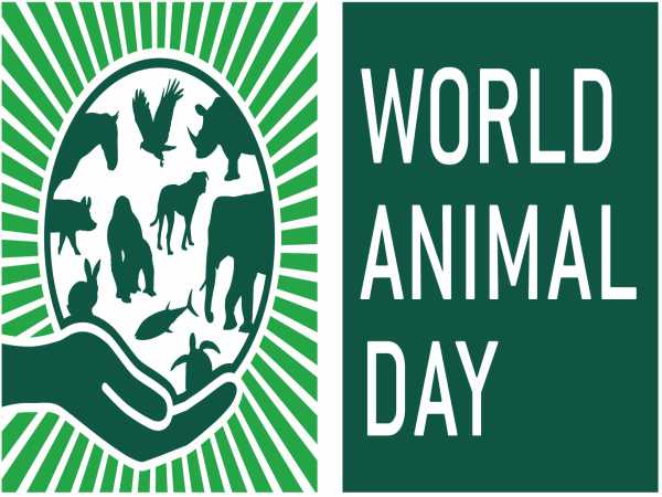 World Animal Day: Career Options for Animal Lovers
