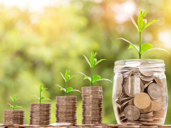 Investment Options For Freshers