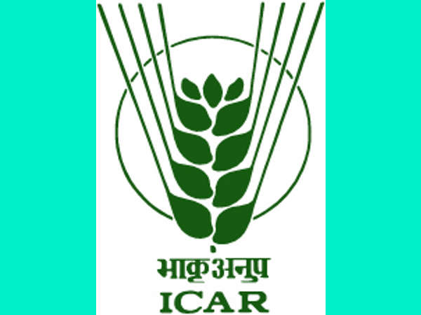 ICAR: Walk-in Interview For 46 Vacancies