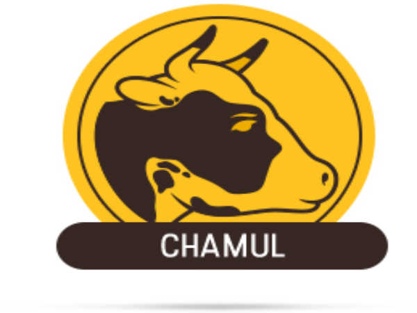 CHAMUL Recruitment 2019 For 72 Posts