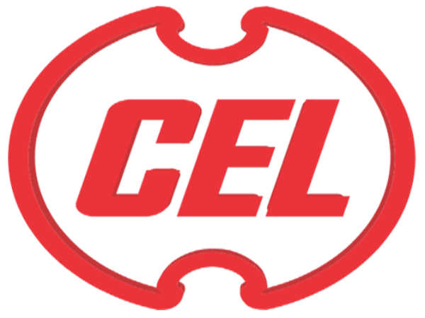 CEL Recruitment 2019: 74 Vacancies