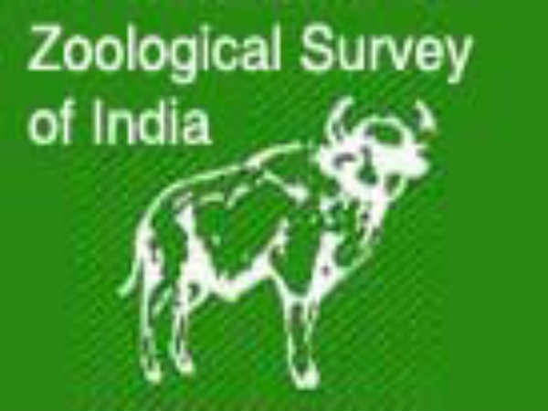 Zoological Survey Of India: 225 Posts