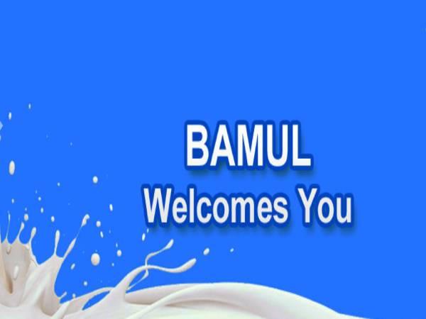 BAMUL Recruitment 2021: 297 AM, Tech, Officer Job