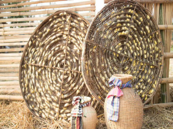 Sericulture Assam Recruitment 2021:180 Grade IV openings