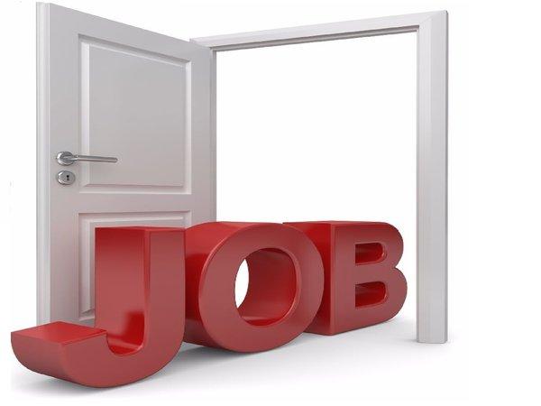 UP Power Corporation Ltd Recruitment 2021 For 49 Camp Assistant Posts, Online Registration Starts On October 5