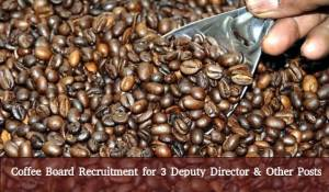 Coffee Board Recruits 3 Deputy Director Posts