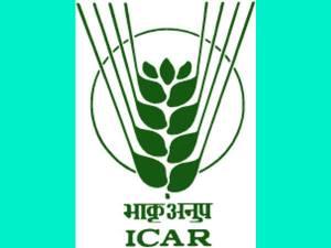 ICAR: Walk-in Interview For 46 Vacancies