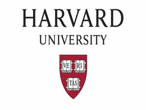 Shape Your Career As Creative Architect Take This Online Course From Harvard University
