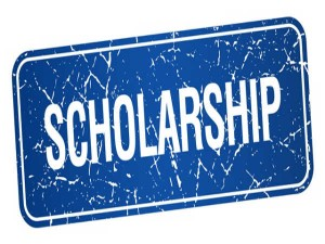 Study Usa Scholarship From Pace University