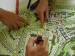 Become an Urban Planner with a Course in Habitat Policy and Practice